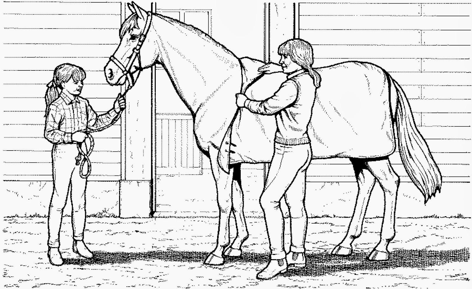 Desenhos Para Pintar De Cavalos
