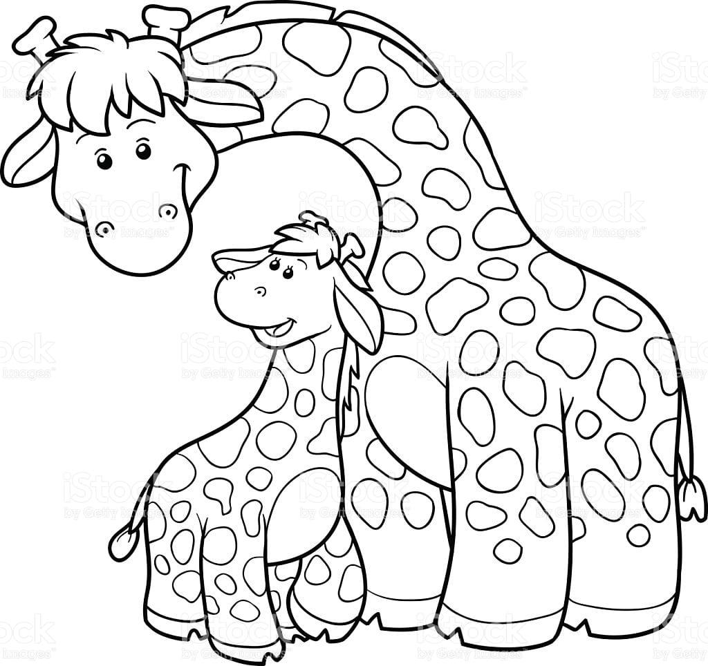 Girafa Para Colorir E Pintar 16