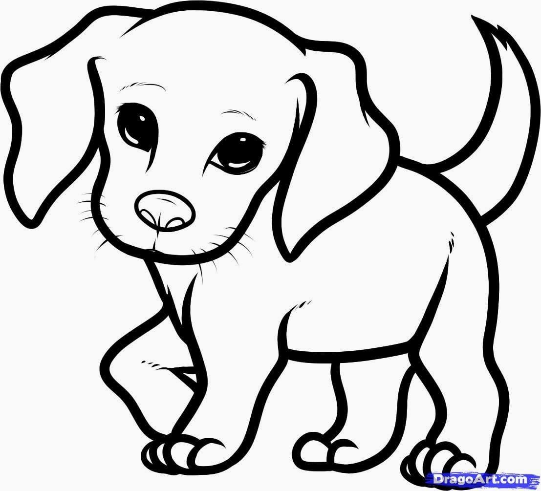 Jogos De Veterinário  Desenhos De Beagle Para Colorir