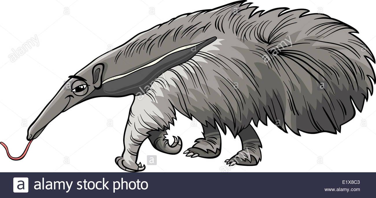 Ilustração De Desenhos Animados De Funny Tamanduá Bandeira Gigante