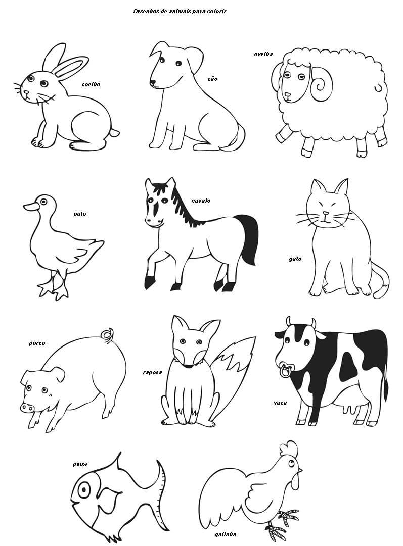 Figuras De Animais Para Colorir E Imprimir