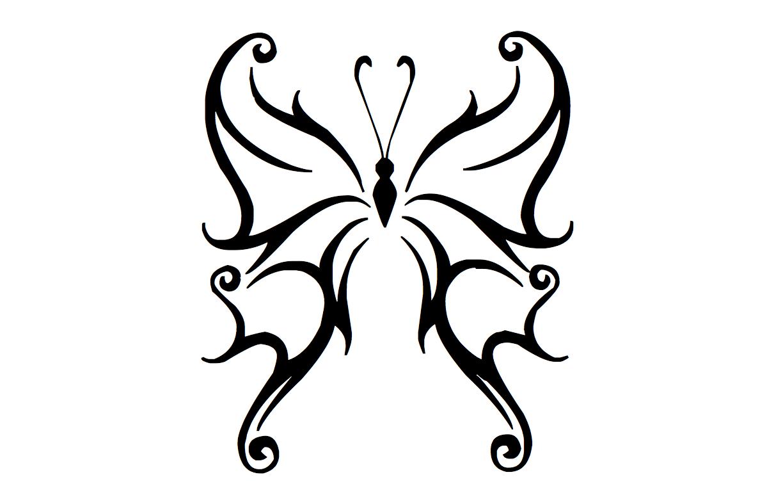 Desenhos De Borboleta