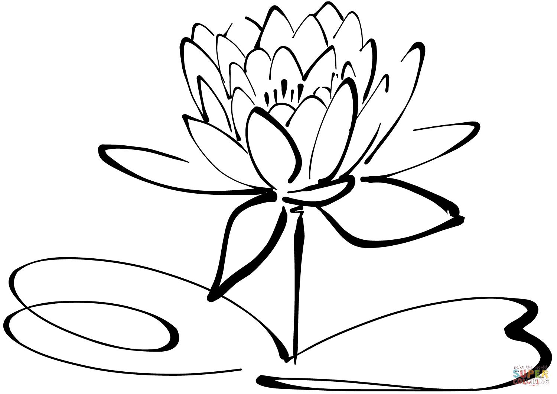 Desenho De Vitória