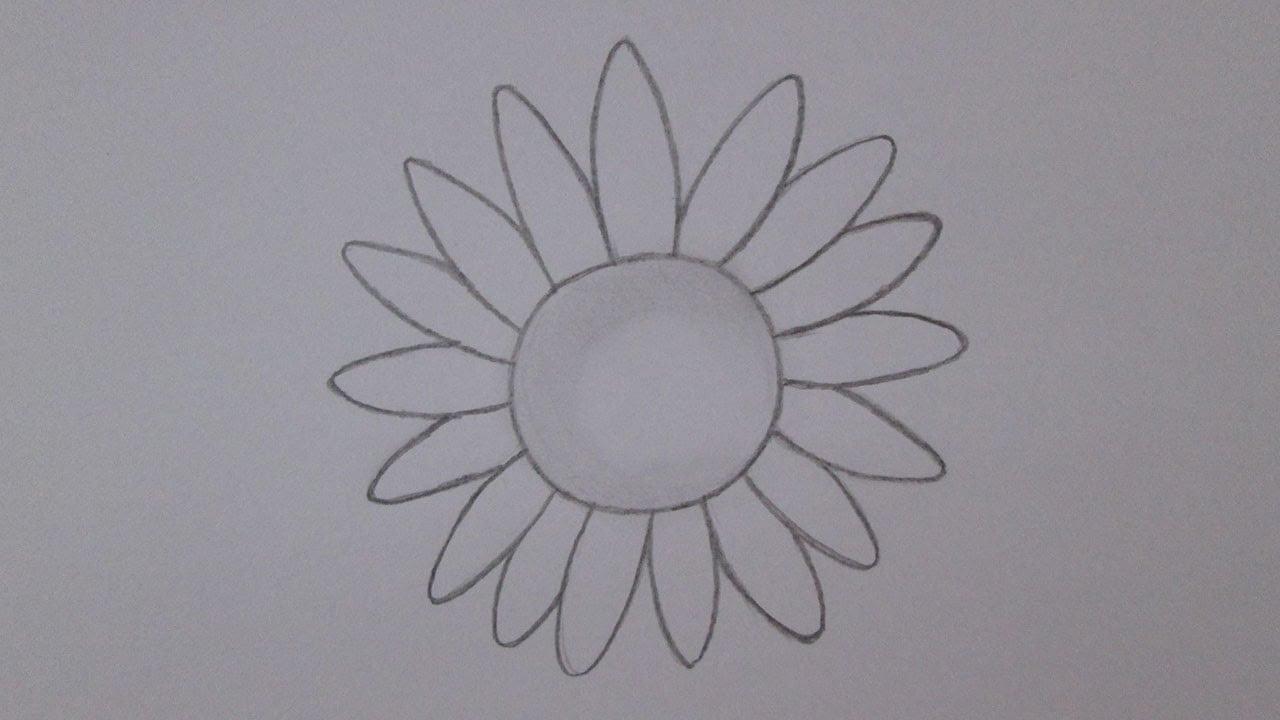 Como Desenhar Um Girassol