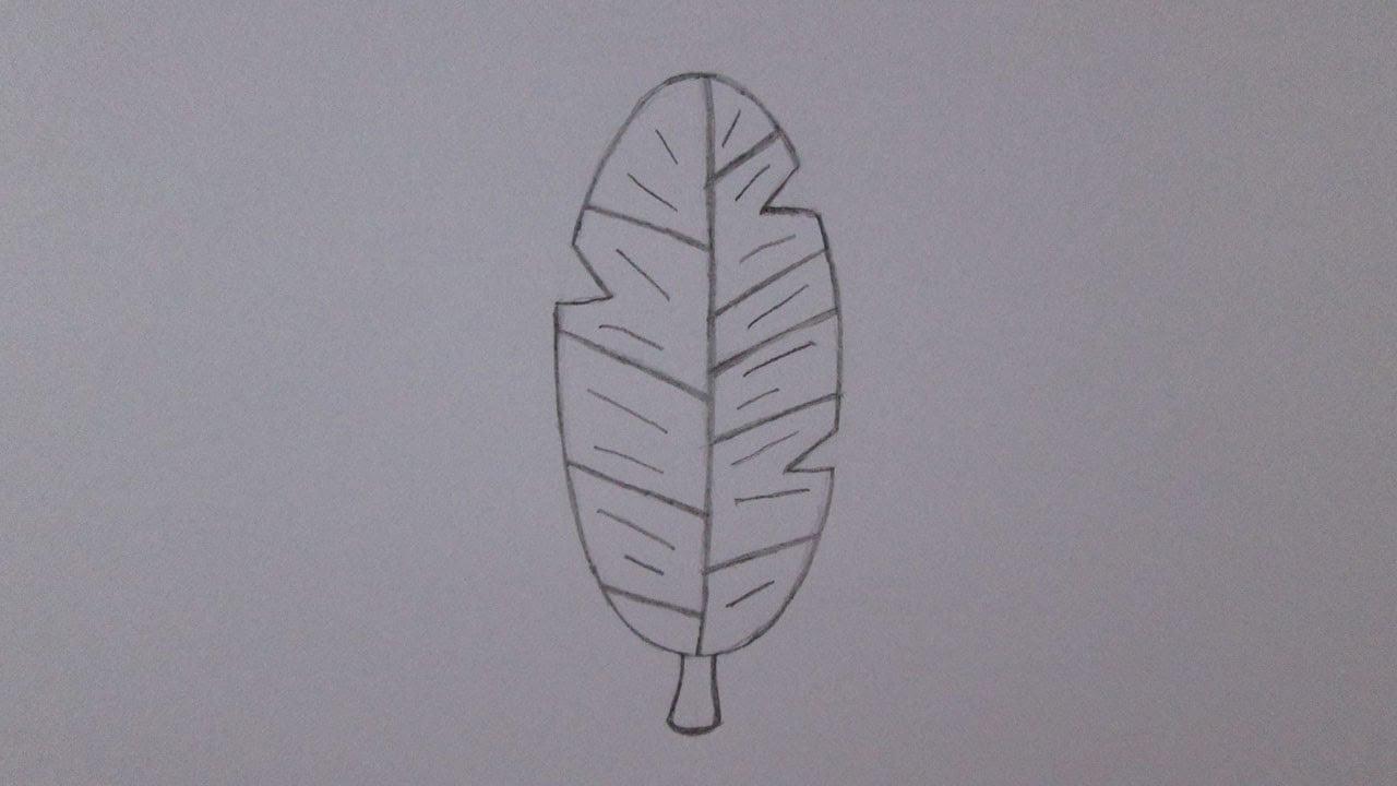 Como Desenhar Uma Pena