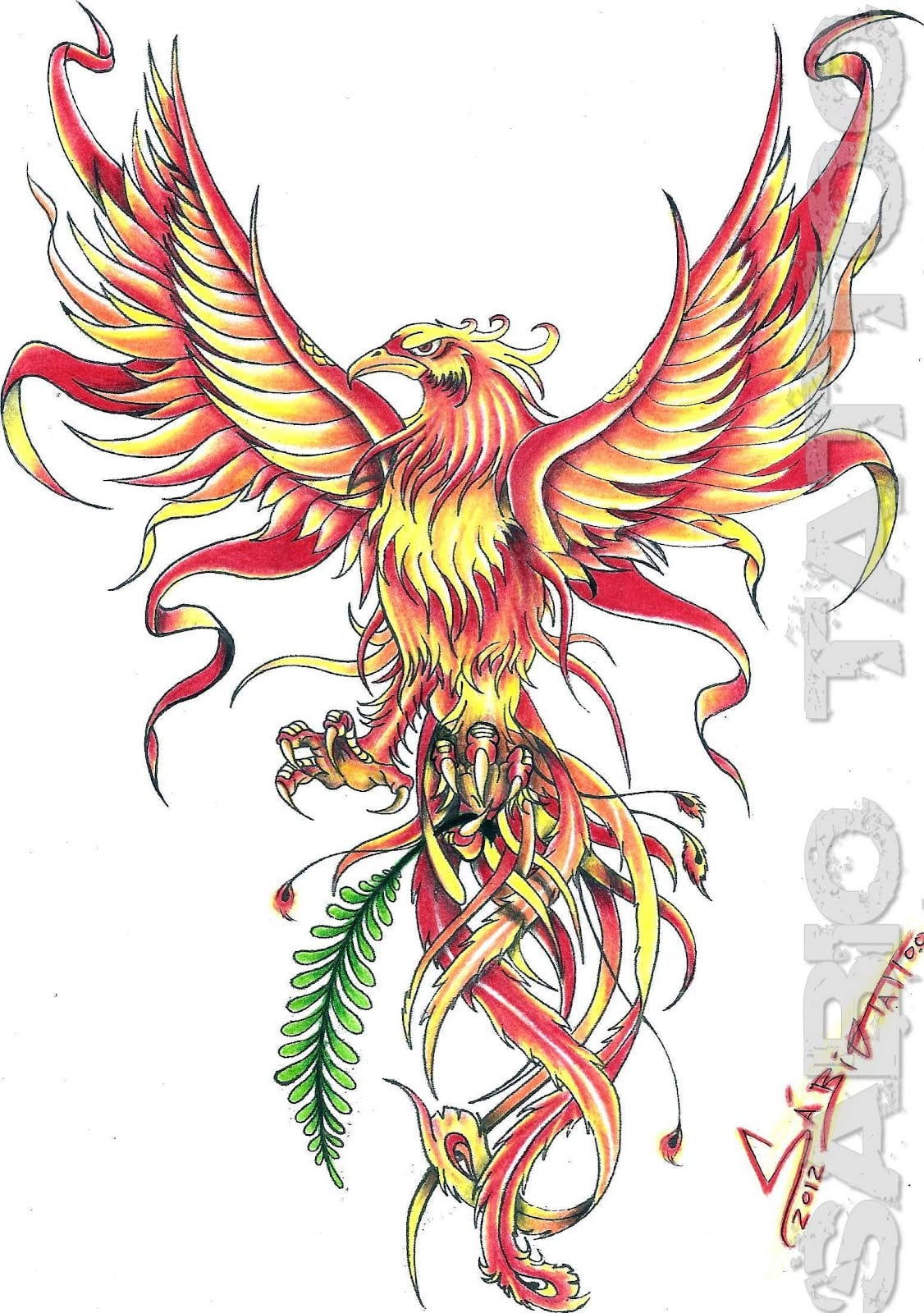 SÁbio Tattoo   Tatuagem Profissional  Desenho De Fenix