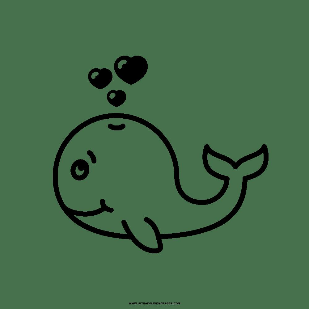 Baleia Desenho Para Colorir