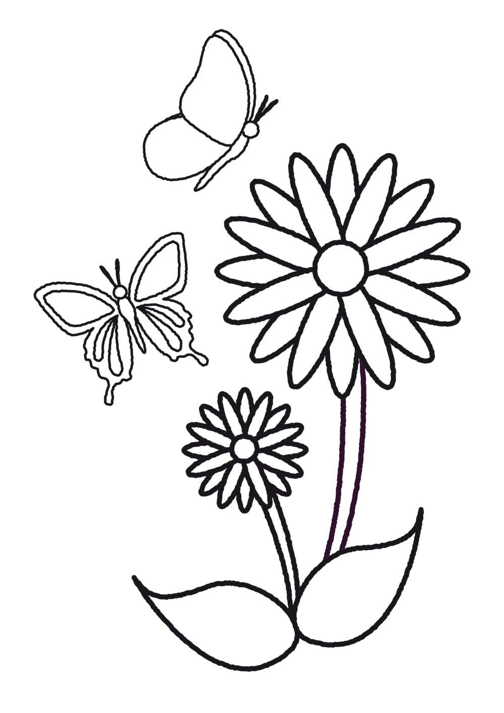Plantillas De Flores Y Mariposas Para Colorear