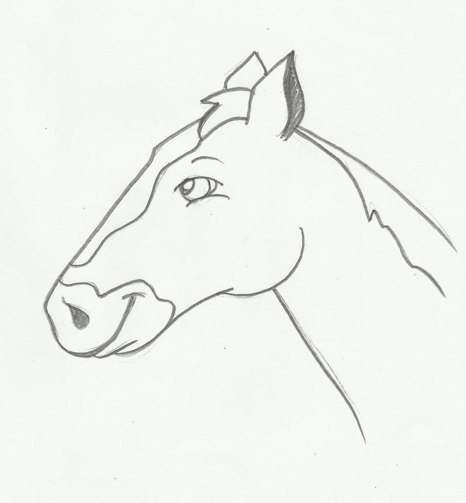 Desenho De Carinha De Cavalo Para Imprimir E Colorir
