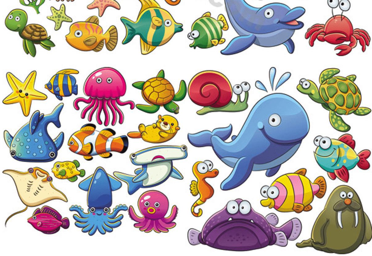Desenhos De Animais Marinhos