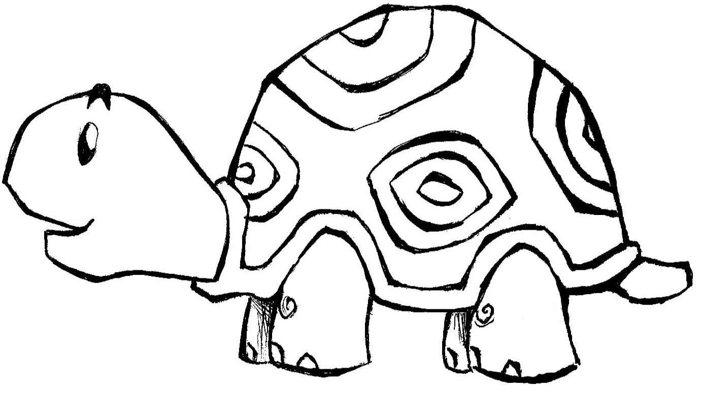 Desenho De Tartaruga Para Colorir  Muitos Desenhos De Animais Para