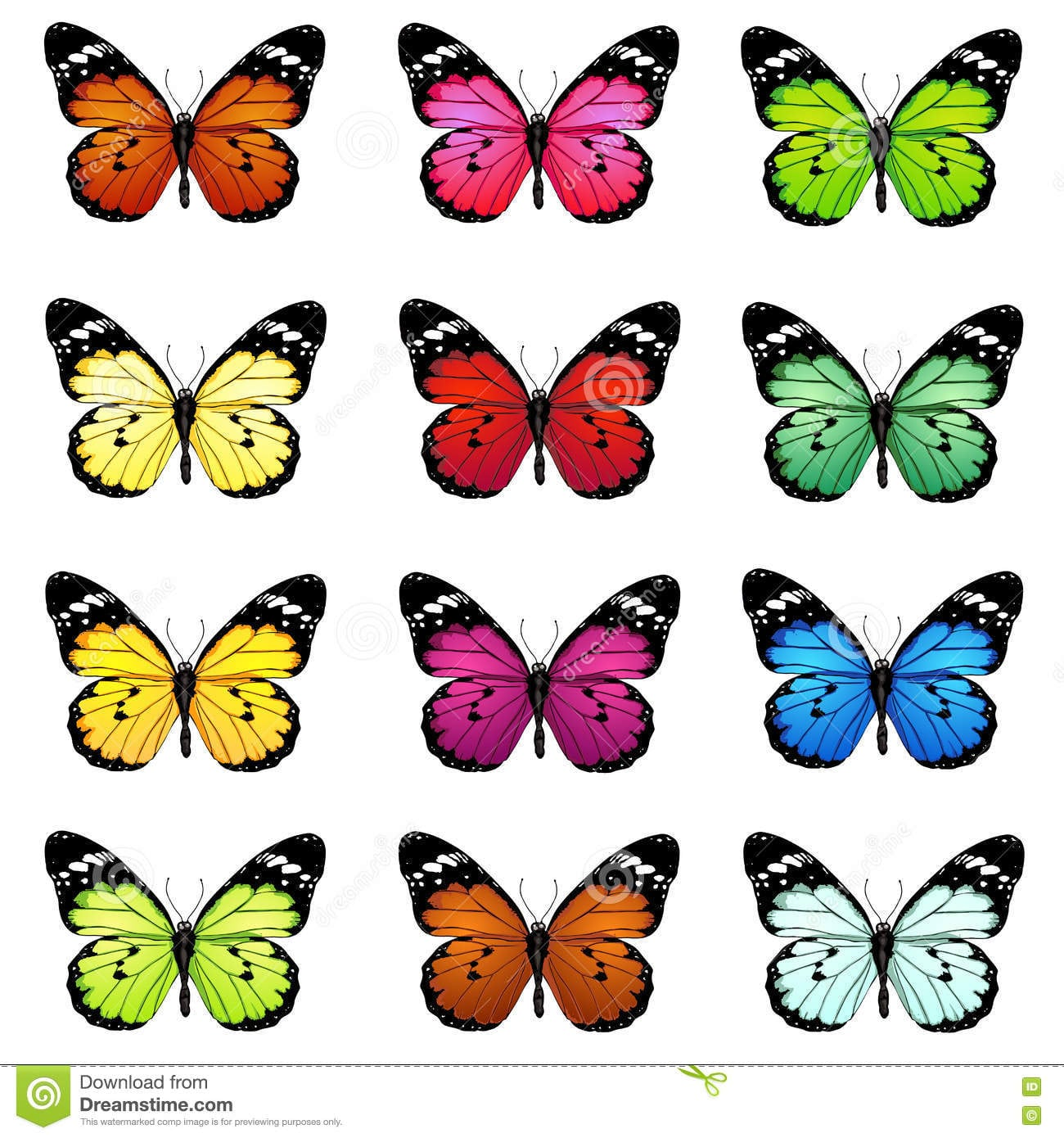Grupo Do Vetor De Borboletas Coloridas Dos Desenhos Animados
