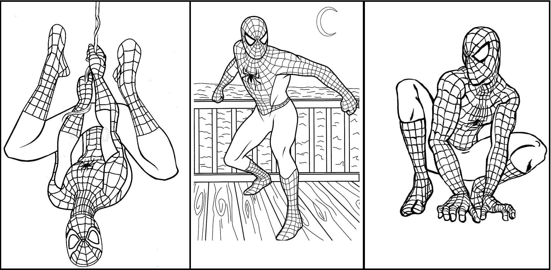 Desenhos para colorir homem aranha 3 †pampekids net resultado de imagem para desenhos para colorir adultos