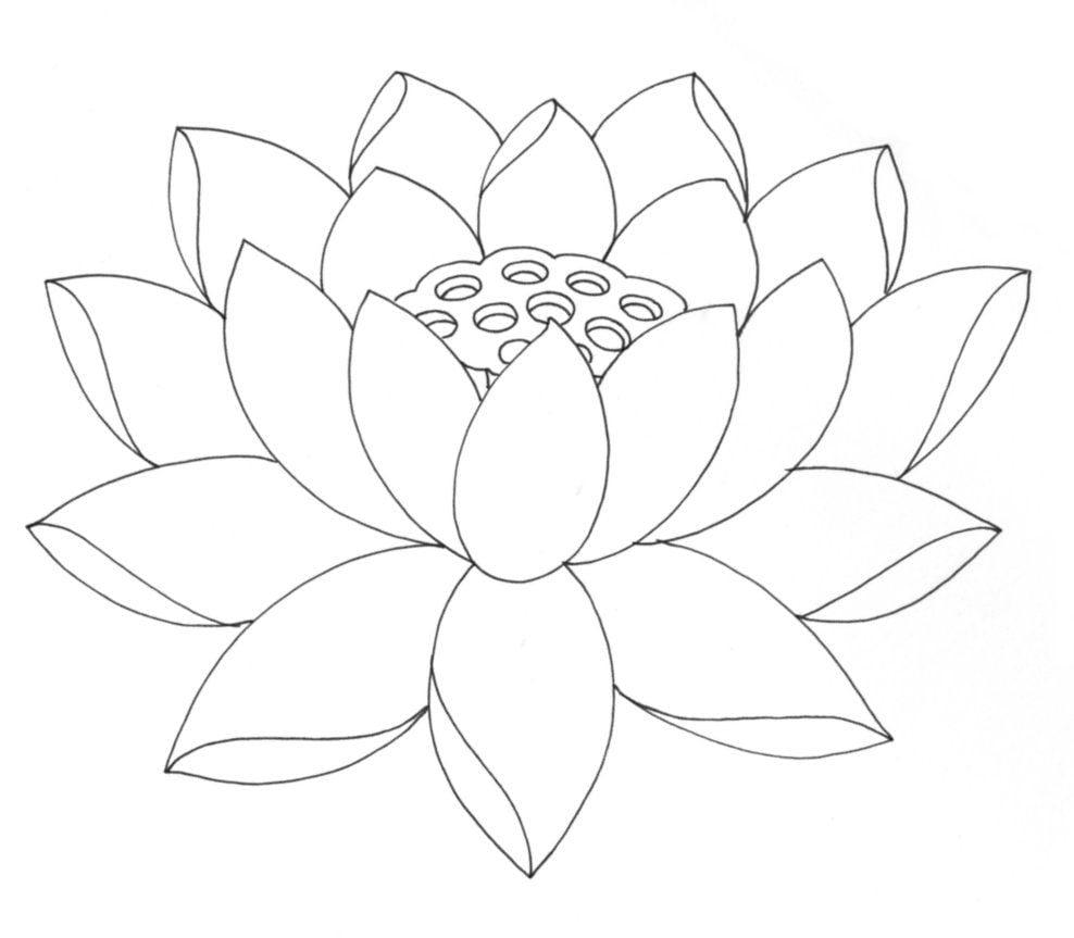 Desenhos De Flores  38 Ideias Para Imprimir E Colorir