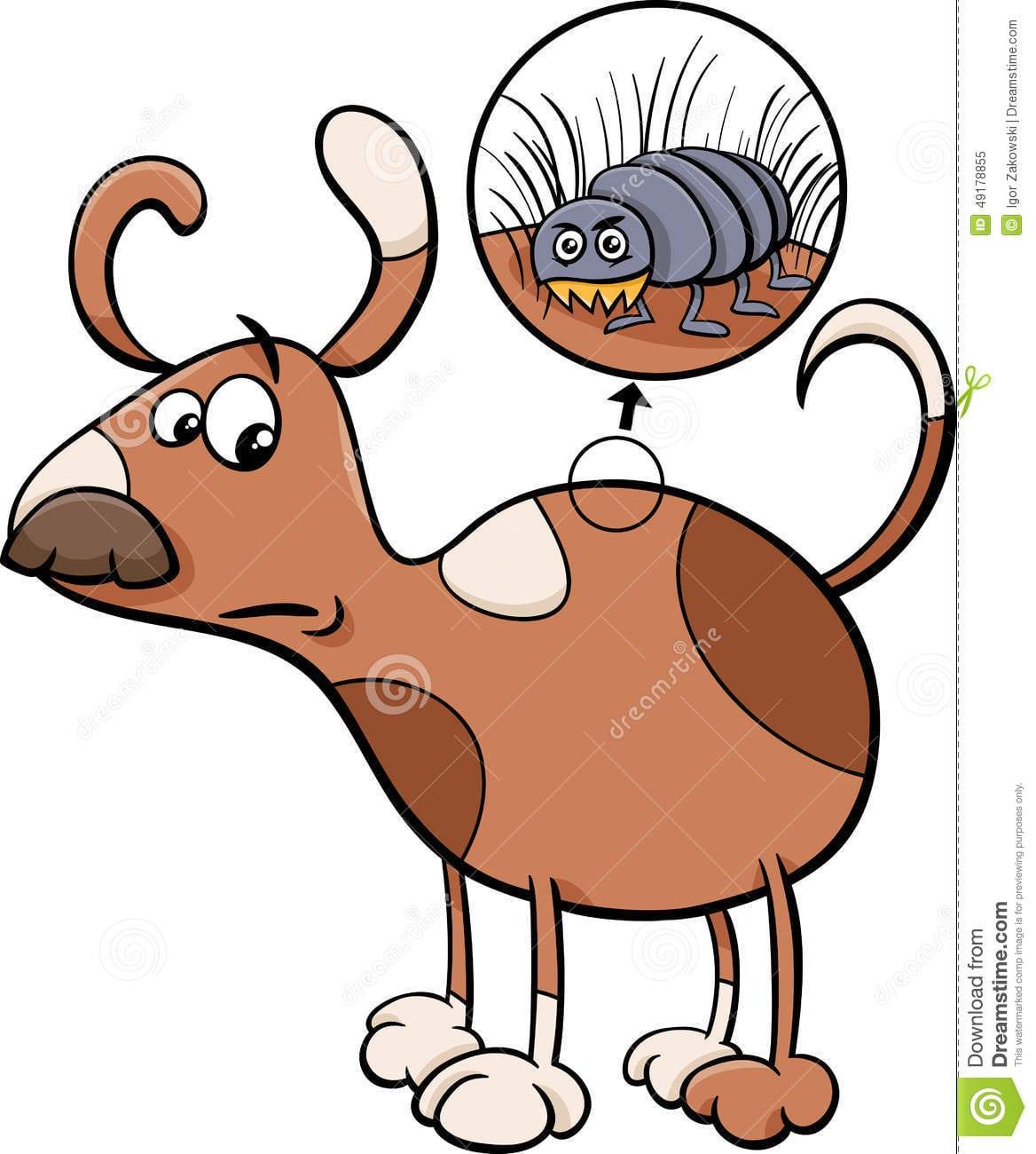 Ilustração Dos Desenhos Animados Do Cão E Da Pulga Ilustração Do