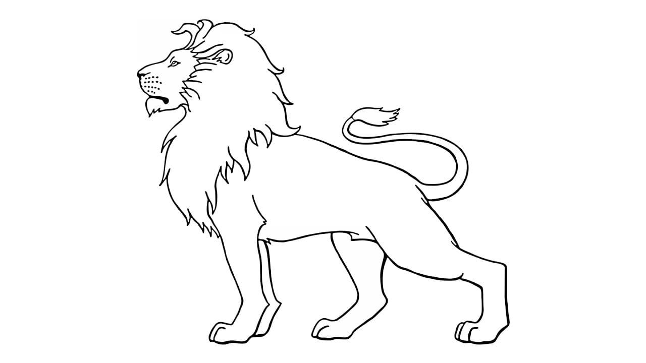 Como Desenhar Um Leão (animais)