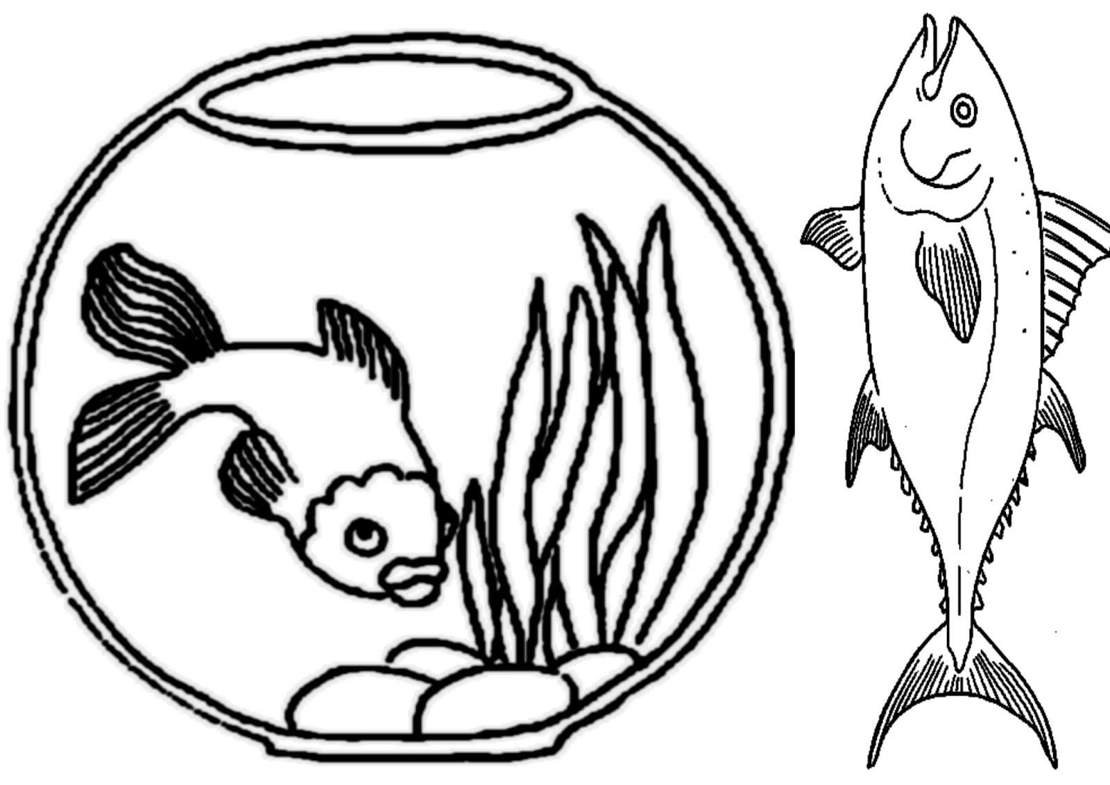 Desenho De Peixe E Aquário Para Colorir