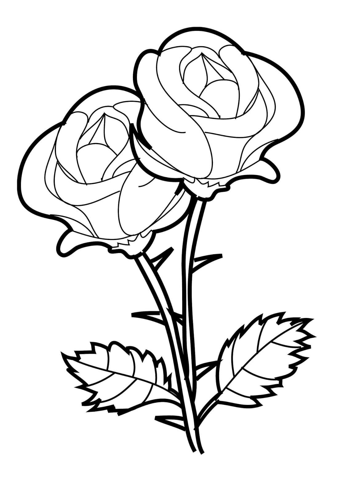 Melhores Desenhos Para Colorir  5 Desenhos De Rosas Para Colorir