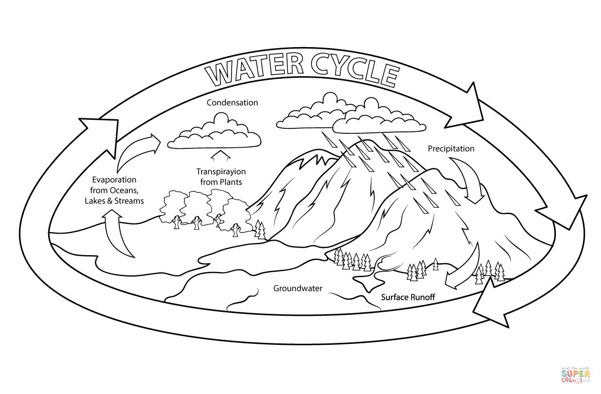 Desenho De Ciclo Da água Para Colorir