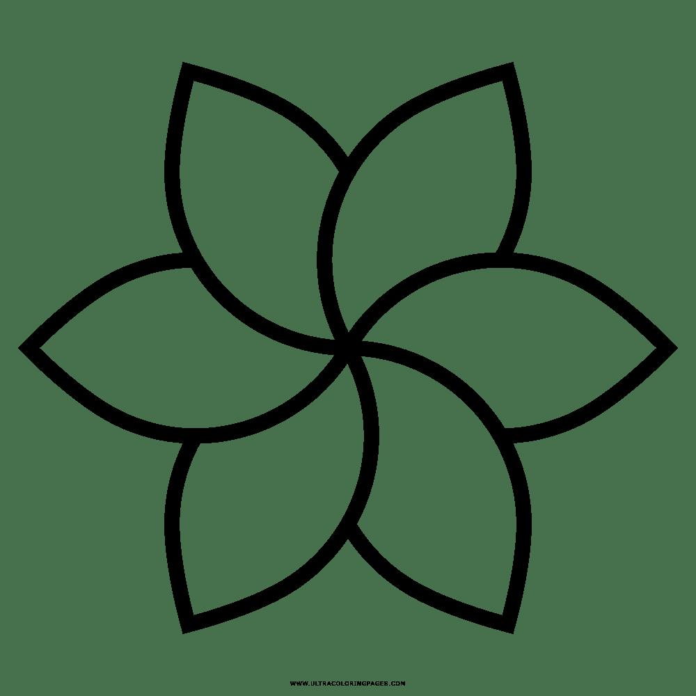 Flor Desenho Para Colorir