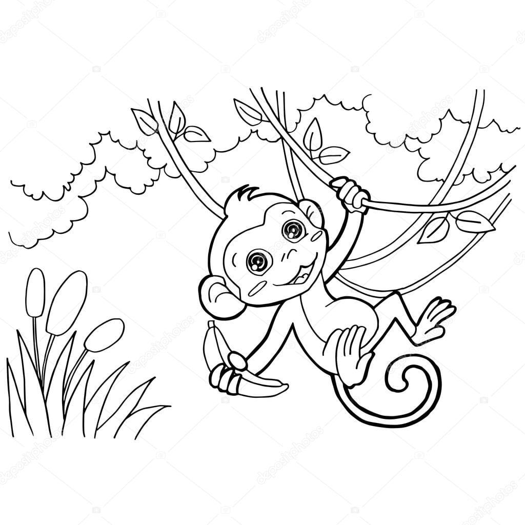 Páginas Do Macaco Dos Desenhos Animados Para Colorir Vector