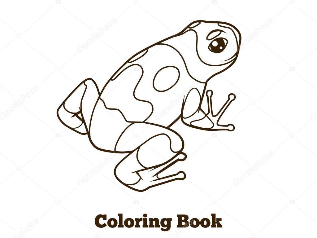 Desenho De Sapo Vetor De Livro De Colorir — Vetores De Stock