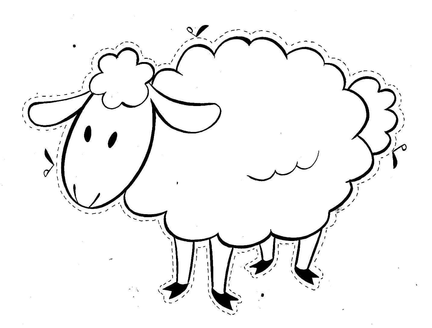 Desenhos Para Colorir De Ovelha – Pampekids Net