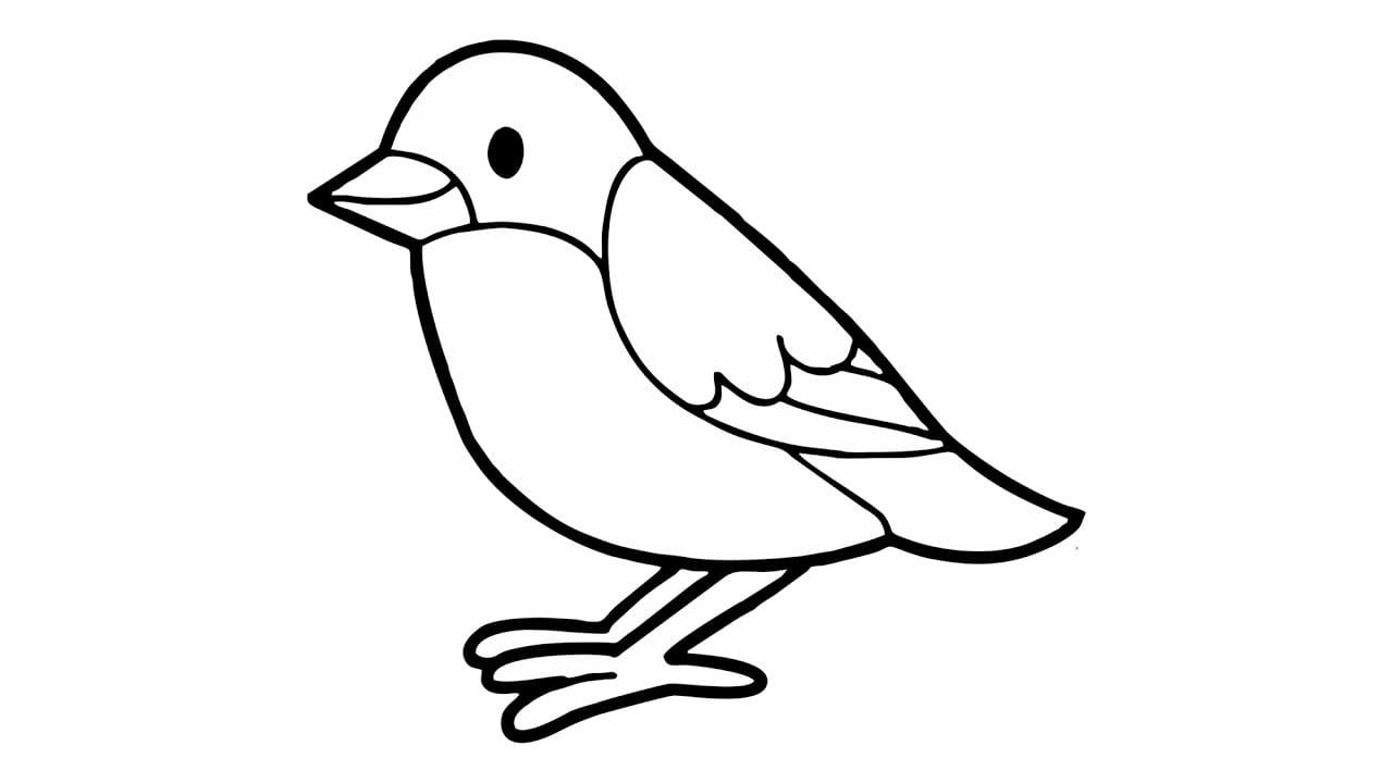 Como Desenhar Um Passarinho (pássaro, Animais)
