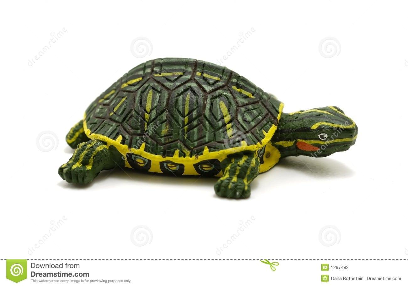 Tartaruga Foto De Stock  Imagem De Emplastro, Figurine