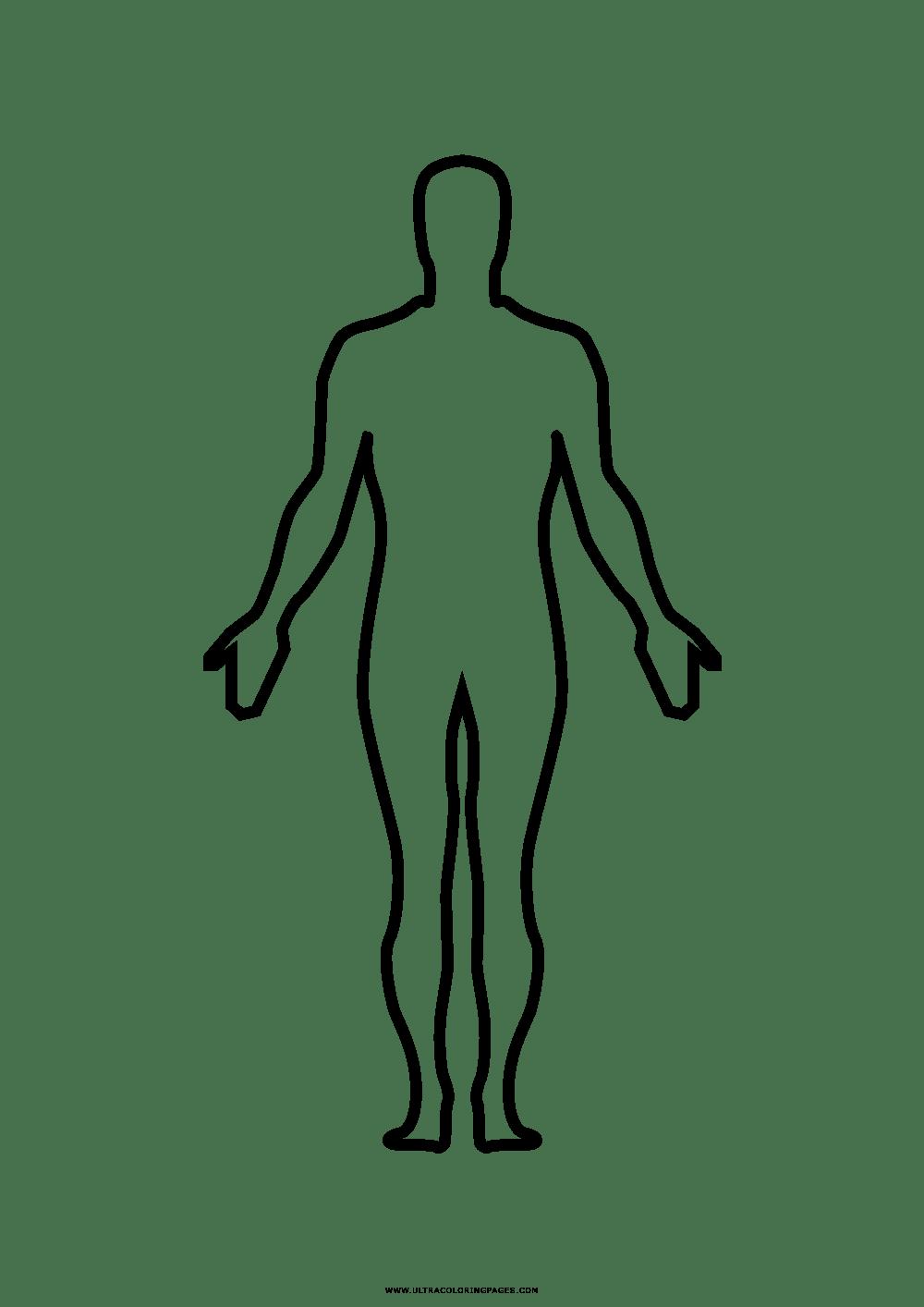 Corpo Humano Desenho Para Colorir