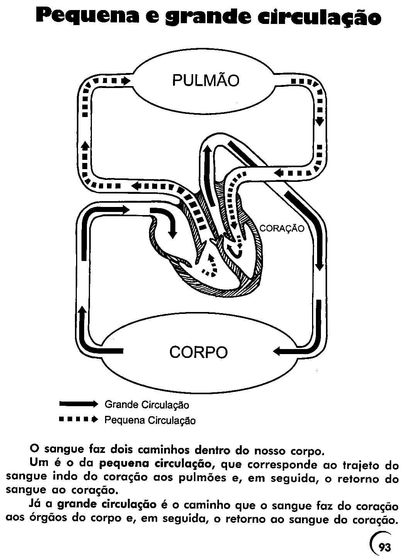 Desenho De Cora軋o Hoyuk Westernscandinavia Org