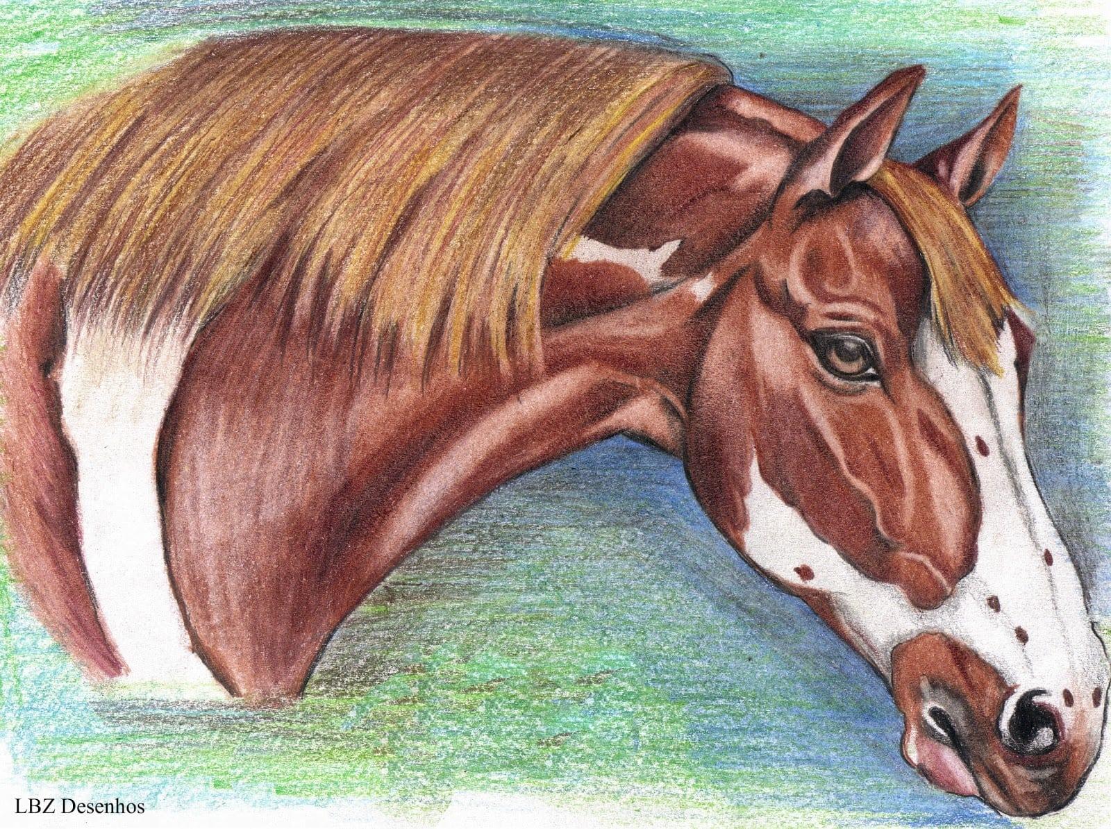 Lbz Desenhos  Cavalos