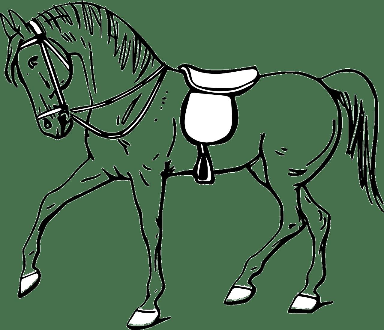 Como Aprender A Desenhar Um Cavalo – Heróis No Papel