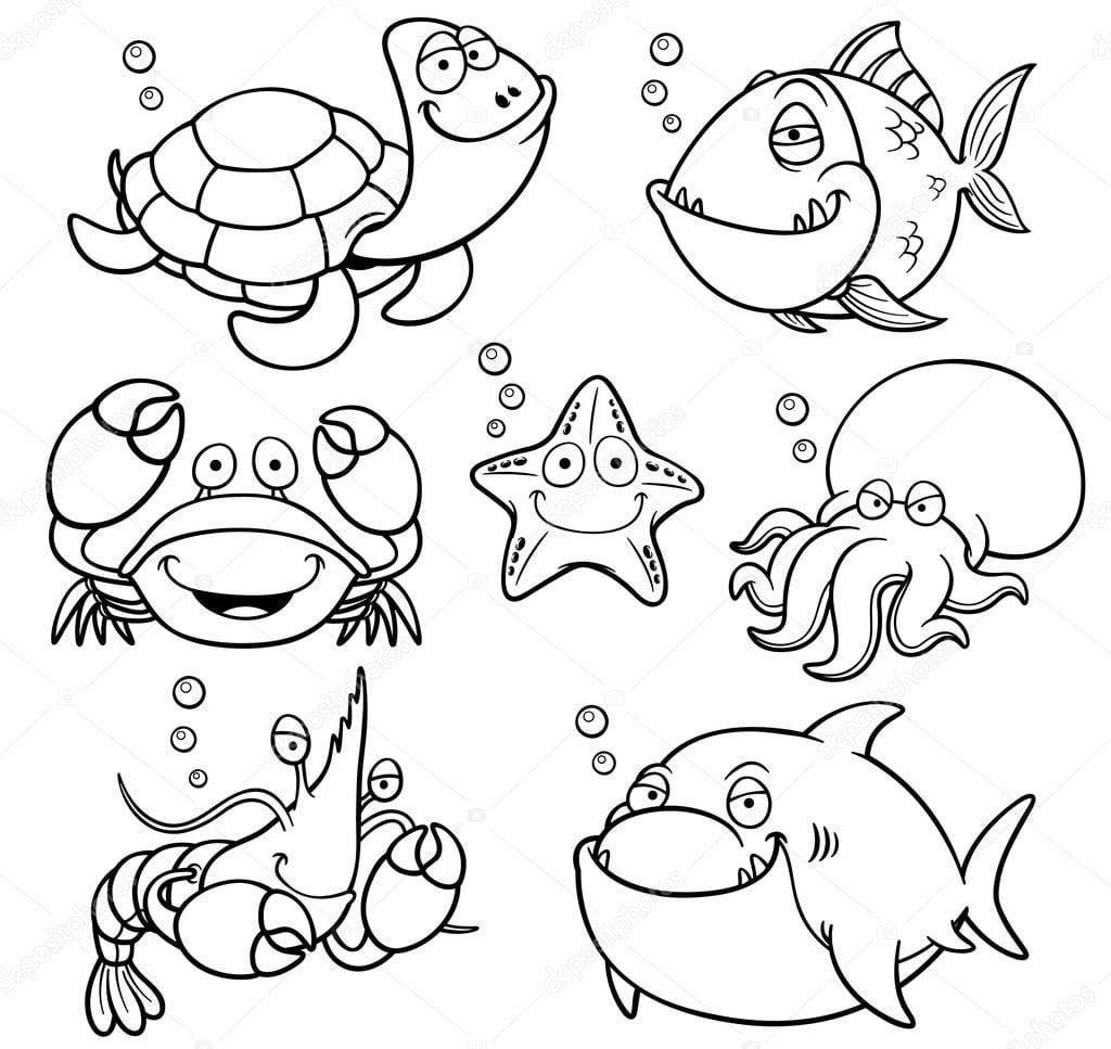 Recolha De Animais Do Mar — Vetor De Stock © Sararoom  39941187