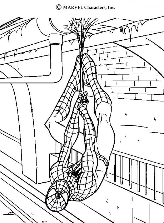 Espetacular Homem Aranha