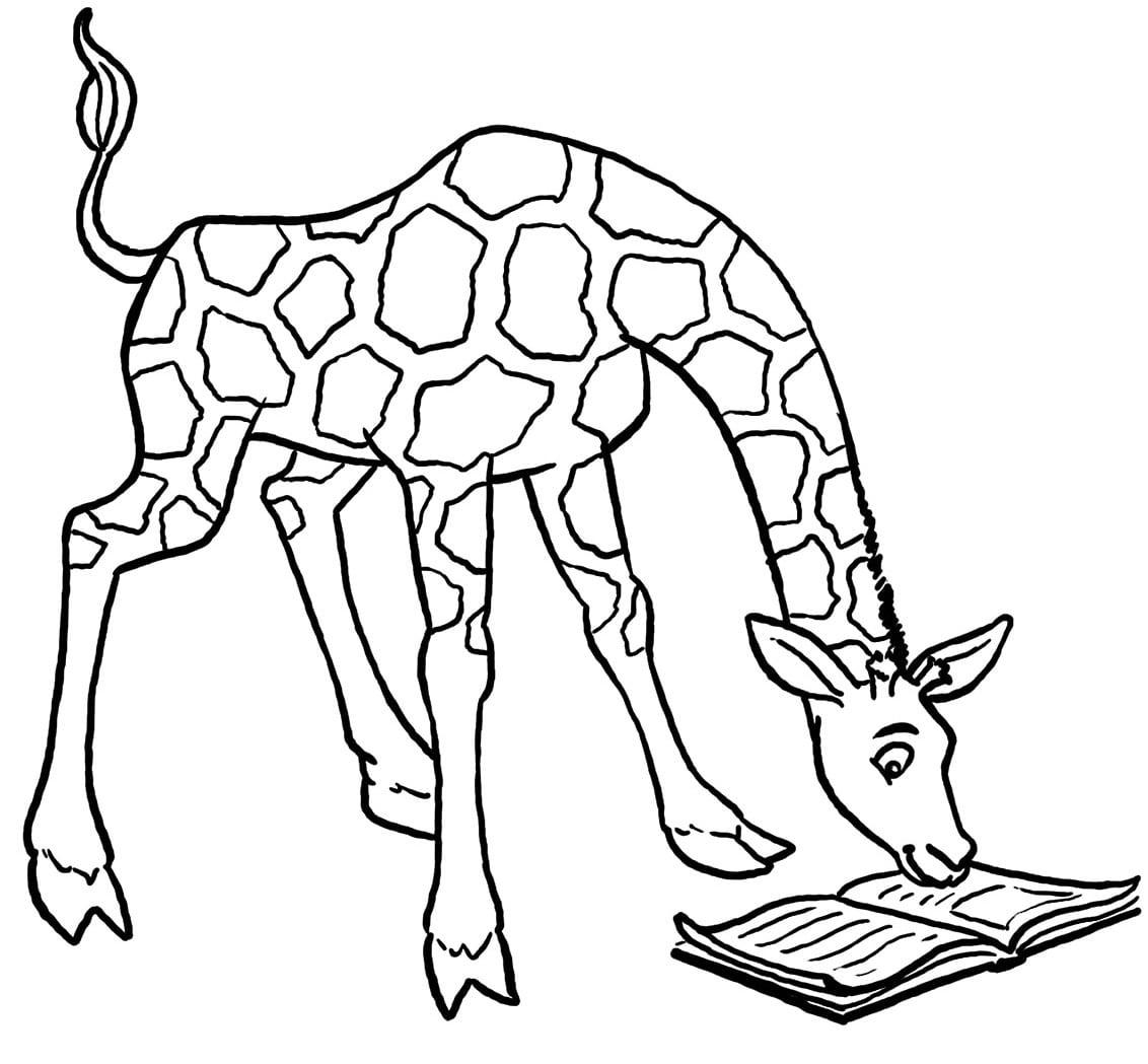 Desenho De Girafa Lendo Um Livro Para Colorir