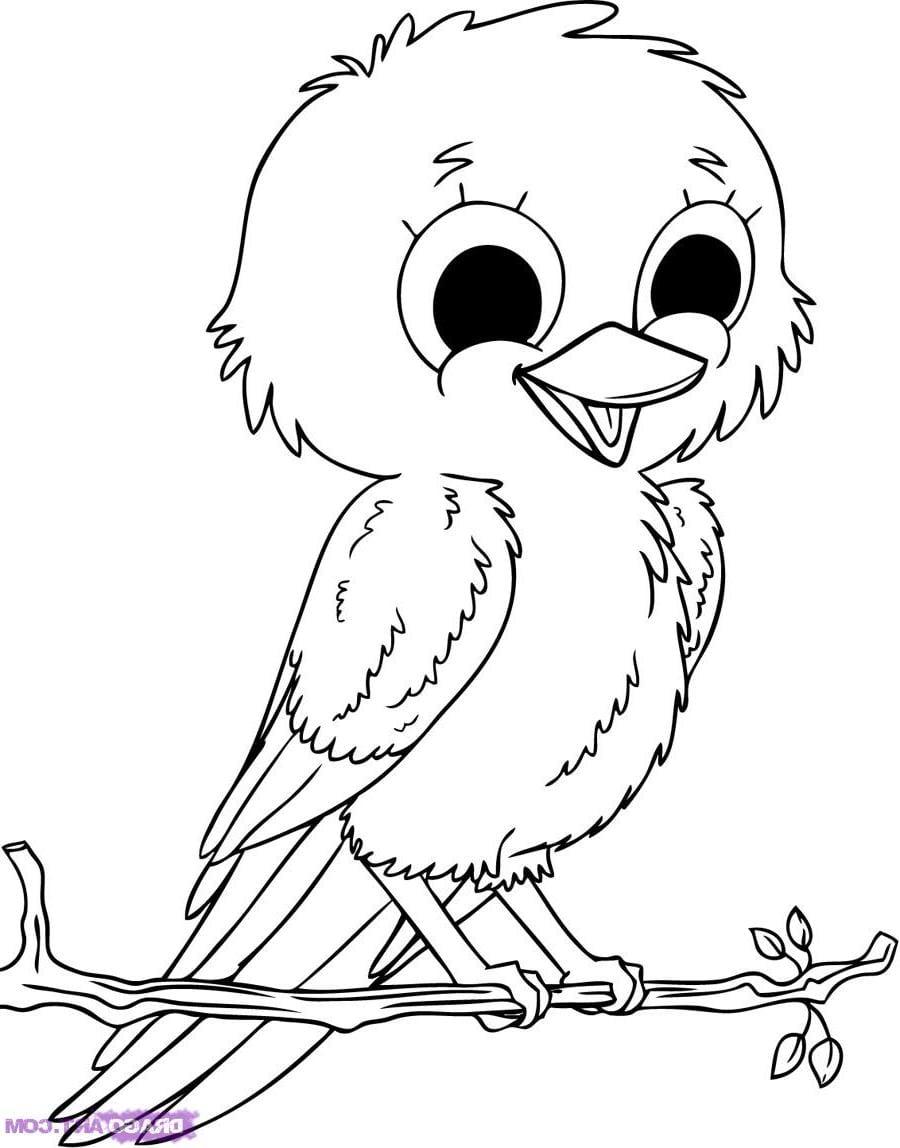 Rosto De Animais Para Colorir – Pampekids Net