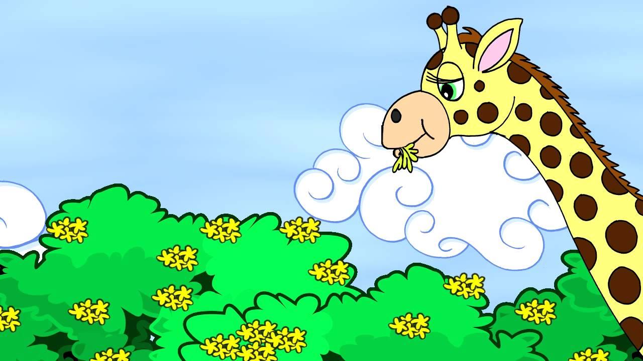 A Girafa Mabel
