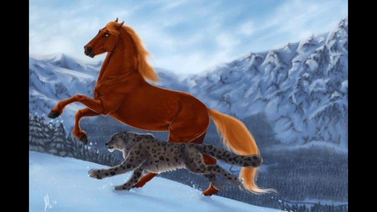 Algumas Fotos E Desenhos De Cavalos 2