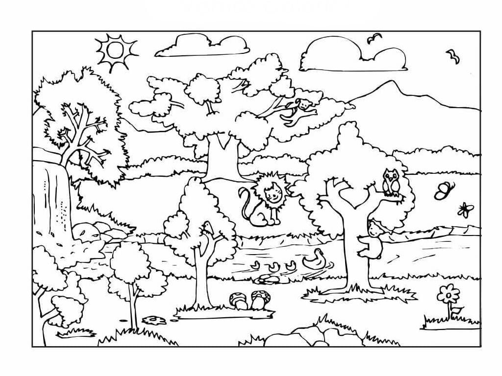 Desenho Para Colorir Da Natureza – Pampekids Net