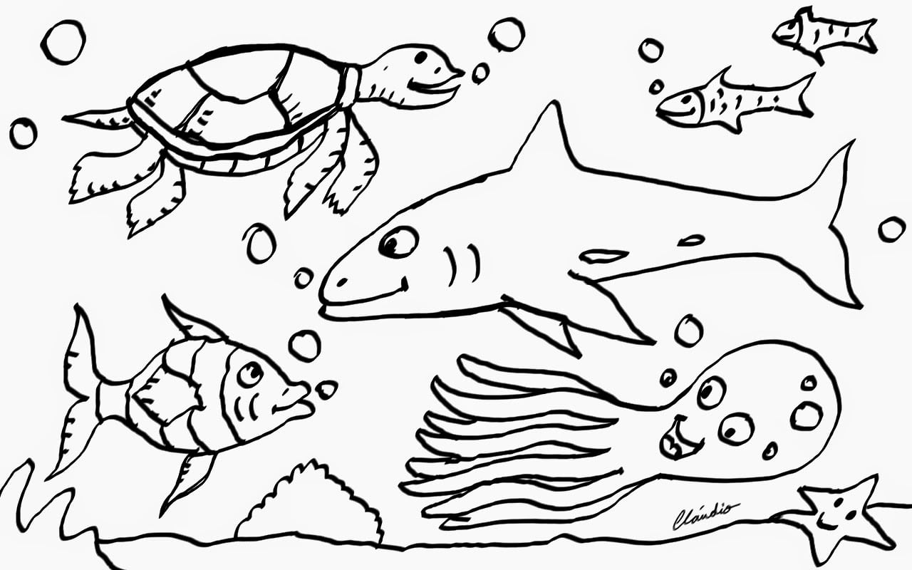 Descoberta Visual  Animais Do Mar Para Colorir