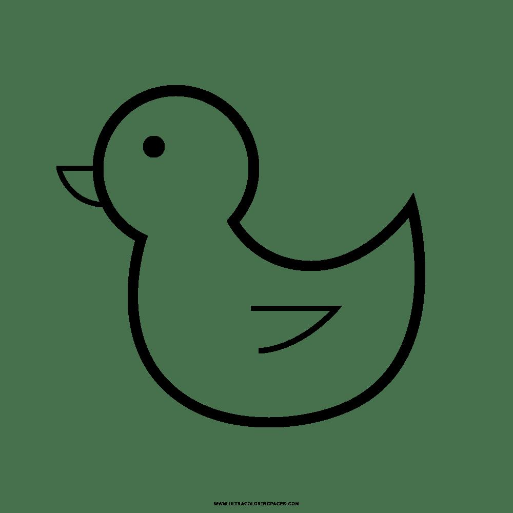 Pato Desenho Para Colorir