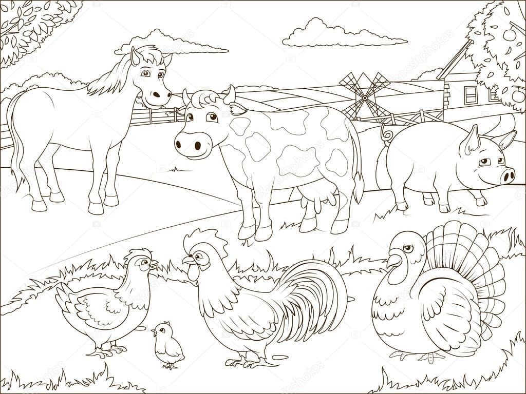Colorir Livro Fazenda Dos Desenhos Animados Educativos — Vetores