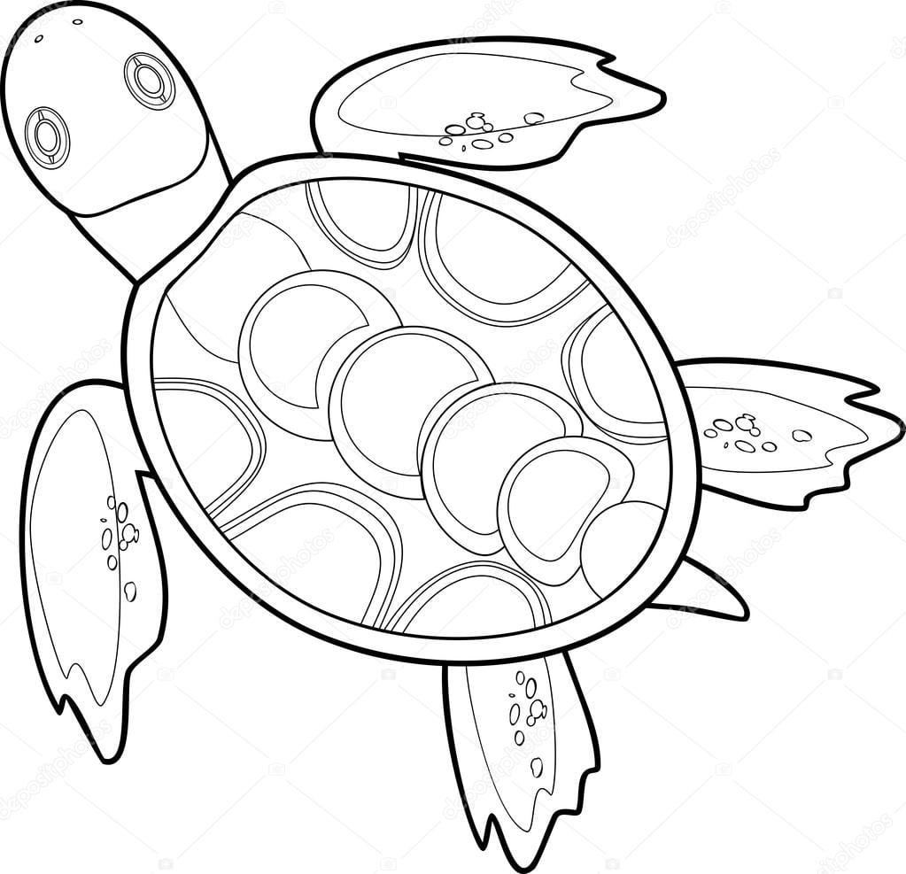 Colorir Com Tartarugas Marinhas — Vetor De Stock © Mariaflaya