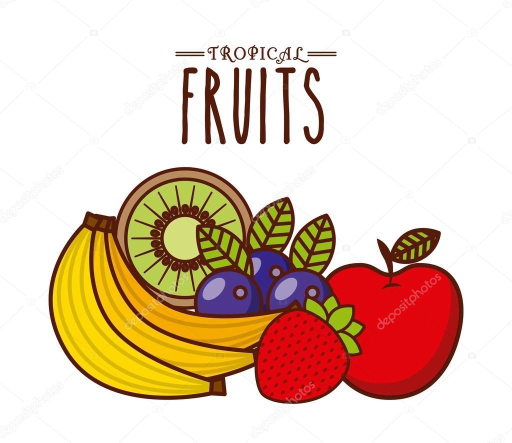 Desenho De Frutas Tropicais — Vetor De Stock © Yupiramos  94327120