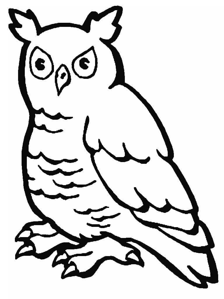 Desenhos De Animais Colorir Pintar Imprimir – Pampekids Net