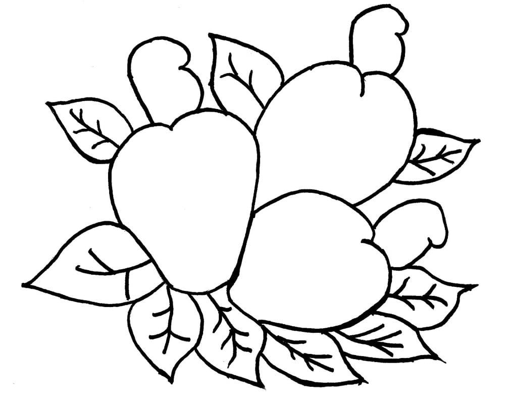 Desenhos De Caju Para Colorir, Pintar, Imprimir – Pampekids Net