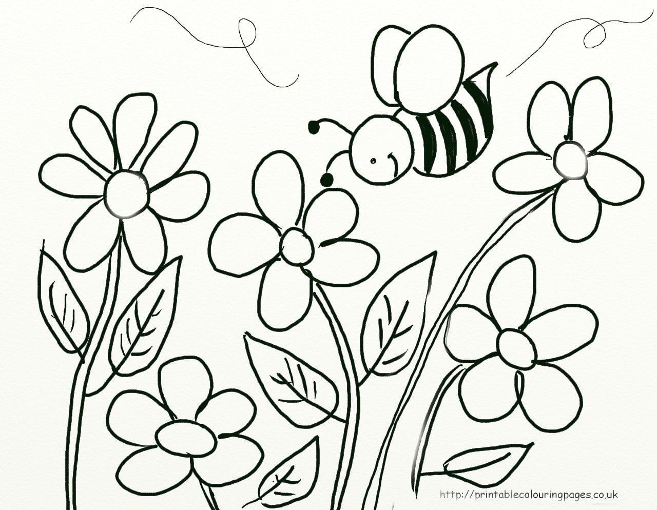 Imagens Para Colorir De Flores