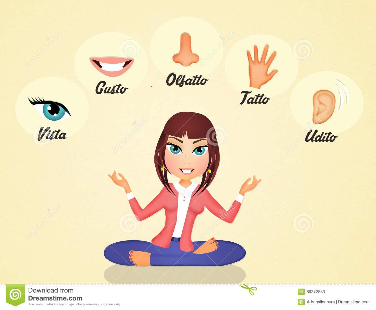Os Cinco Sentidos Ilustração Stock  Ilustração De Menina