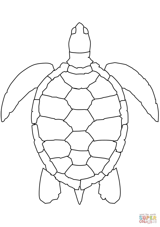 Desenho De Tartaruga Marinha Para Colorir